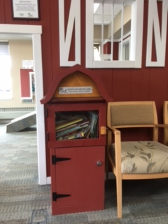 Mille Lacs Health System - Little Free Library